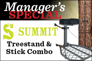 Manager's Special: Summit